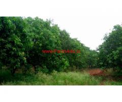 20 acers agriculture land for sale at ragunathapally, Jalgoan district.