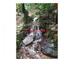 5 acre coffee estate for sale in Chikkamgaluru , 38 km from city