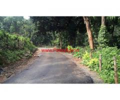For Sale - 55 Acres Arabica Coffee Estate near Balehonnur