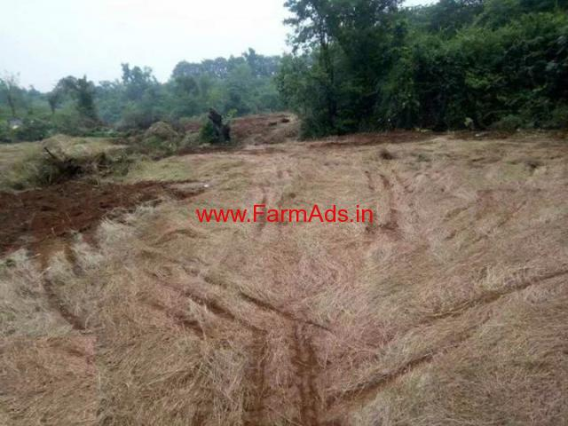 4.5 Acres agriculture land for sale near Ratnagiri