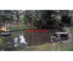 Farm house in 3 acres  farm land for sale at Dodamarg , Sindhudurg