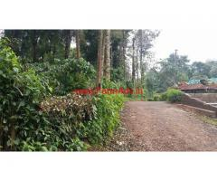 5 Acre robusta Coffee Estate for Sale, 25 KMS from Madikeri