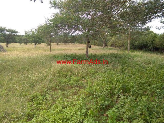 4 Acres Farm Land For Sale In Suriy Lur