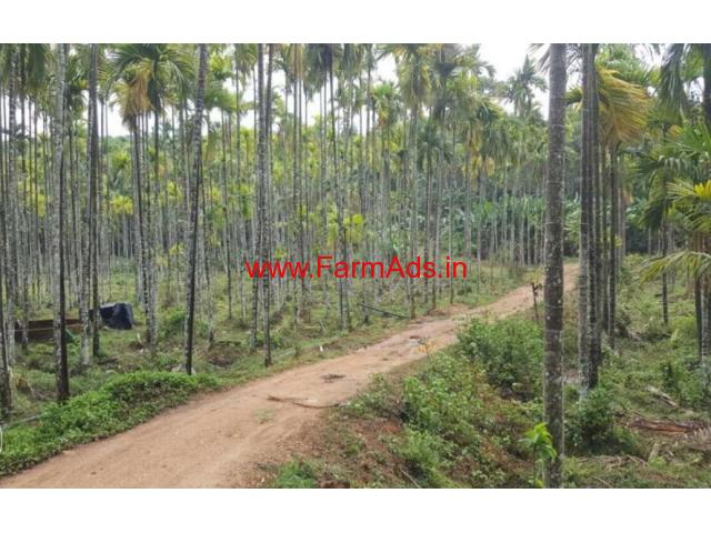 5 acre Coffee farm land for sale in Mananthavady, Wayanad ...