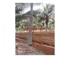 11 Acres Coconut Farm Land for sale at Coimbatore - Kovilpalayam Road