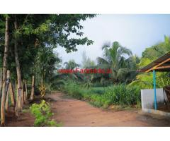 Agricultural Land (3.37 Acres) for sale near Thondamuthur, Coimbatore