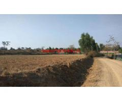 12 Acre Agriculture Farm land for sale Near Thally Marupali Road .