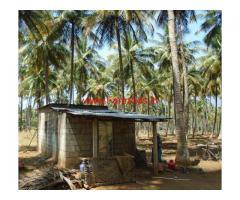 4.5 Acres farm land for sale near Batlagundu