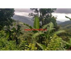 30 cents agriculture farm land for sale near Silver Falls