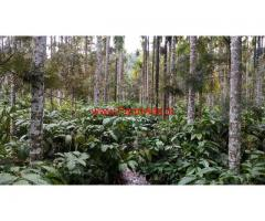 4 Acre Coffee Estate For Sale in Chikmagalur,  Mudigere Taluk