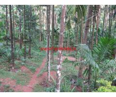 4.65 acres Record + 2 acres Kumki Farm land for sale at Vitla, Puttur