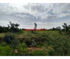 33 Acres Mango and Guava Farm Land for sale at Chilamathur