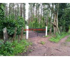 80 Acres Coffee estate for sale in Coorg
