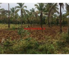 46 Acres Farm Land with Coconut Farm for sale in Chikmagalur