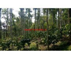 1 acre agriculture land available for sale near Kattikulam - wayanad