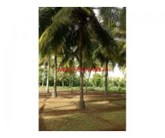 3 acres coconut farm agriculture land for sale at Nanjangud