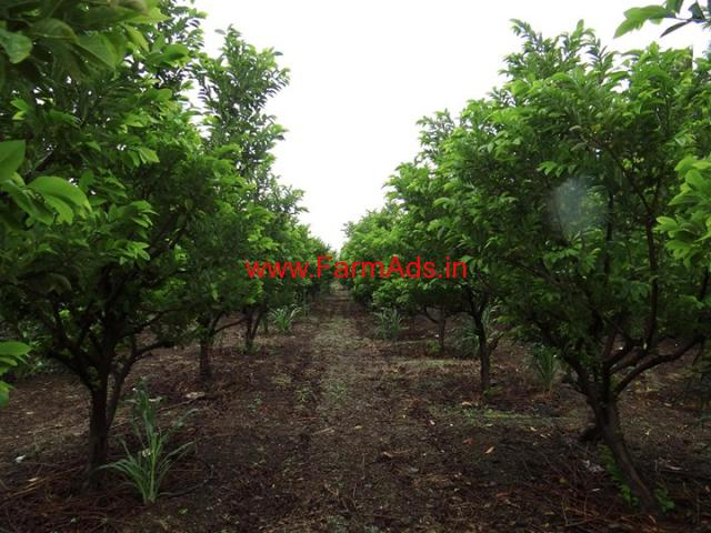 3 Acres well developed agricultural land on lease near Wagholi