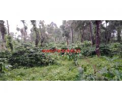 4 acre coffee estate for sale in sakleshpura, 25 KMs from City