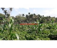 Agricultural land for sale at Pulpally, wayanad