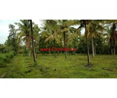 4 acre open plain farm land for sale In between hassan and sakleshpura.