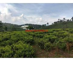 40 Acres Tea estate for sale at Coonoor