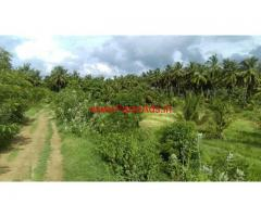 3 Acre agriculture land for sale in Chittur