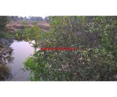 48 Gunta river touch agriculture land for sale in Sawarde