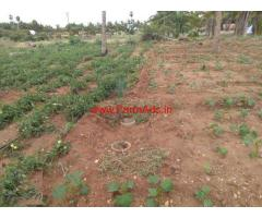 Low budget 2.65 acres agriculture land for sale at Senjeri