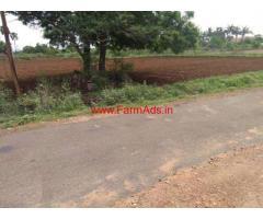 30 Acres agricultural land for sale at Dharapuram