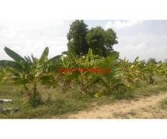 8 Acres agriculture land for sale near Kalavai