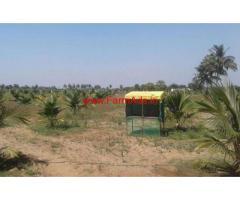 4 Acres coconut farm land for sale  in Sathiyavadi
