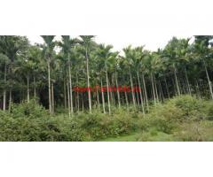 6 acre Agriculture land for sale on Belur - Mudigere road