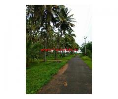 2.5 Acre Coconut Plantation for sale Pollachi to coimbatore main road