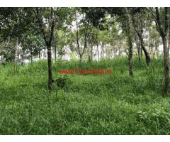 1 acre agriculture farm land with old house for sale in Payyampally
