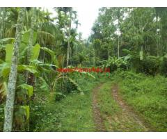 5 acres agriland for sale at Mananthavady