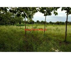 1.24 Acre Farm Land for sale at HD Kote Road. 20 KMS from Ring Road.