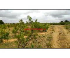8 acre plain farm land for sale  at panchanhalli, kadur taluk