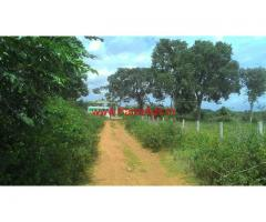 6 Acres Beautiful agricultural land for sale at nagamangala