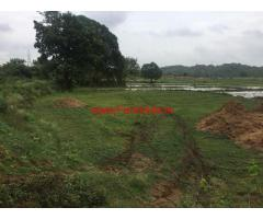 22 acres of agriculture land for sale at Vallabhapur, Ramayampet