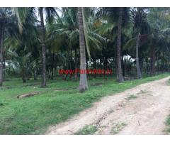 6 acres coconut farms for sale near Kottur