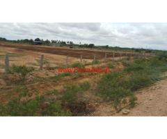 6.5 acres Farm land with Goat Farm Shed for sale at kogira Penukonda