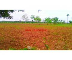 99 Acres Agricultural Farm land for sale, 50 KMS from Pollachi