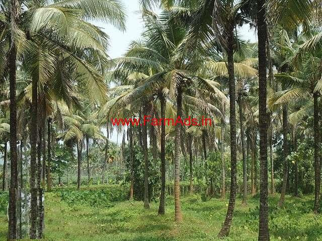 3.41 acre coconut farmland with Big house for sale near Udupi