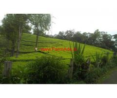 537 Acres Tea Estate with Tea Factory for sale near Ooty