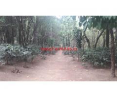 627 Acres Coffee estate for sale in Sakleshpur