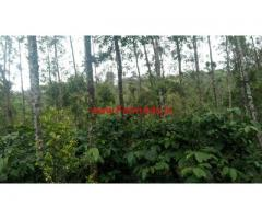 1757 Acres of Coffee estate for sale in Chikmagalur