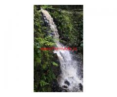 115.5 acres coffee estate for sale in Madikeri