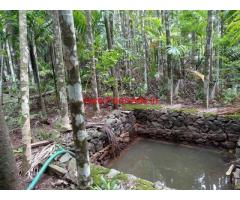 1 Acre and 11.5 cents Farm Land  for sale Kozhikode - Palakkad Highway