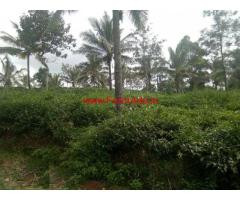 50 cents agriculture farmland for sale near Thalappuzha