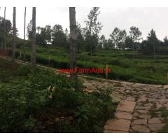 23 cents Tea Estate with Cottage for sale at Kotagiri